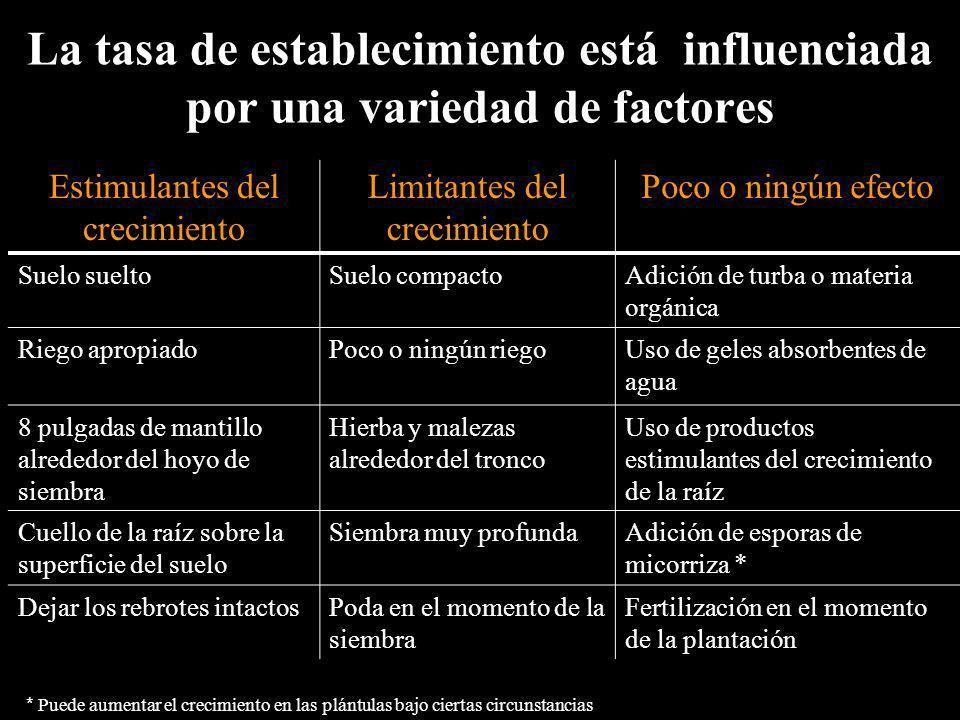 La tasa de establecimiento está influenciada por una variedad de factores
