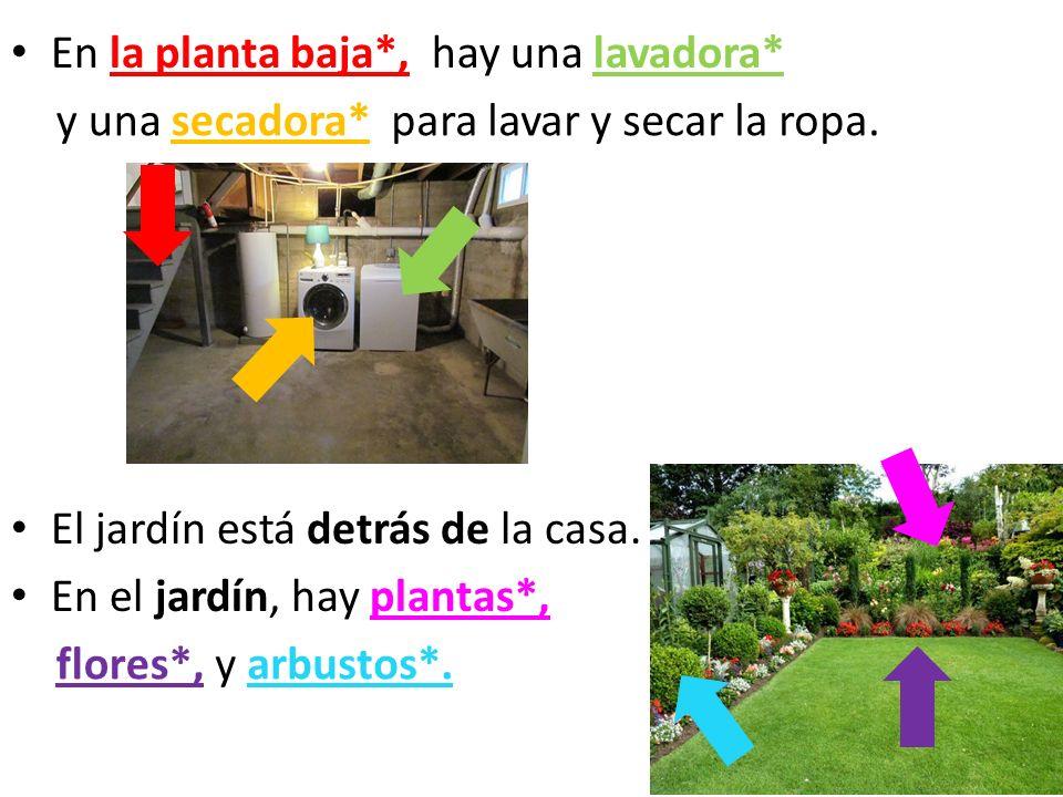 En la planta baja*, El jardín está detrás de la casa. En el jardín, hay plantas*, hay una lavadora*