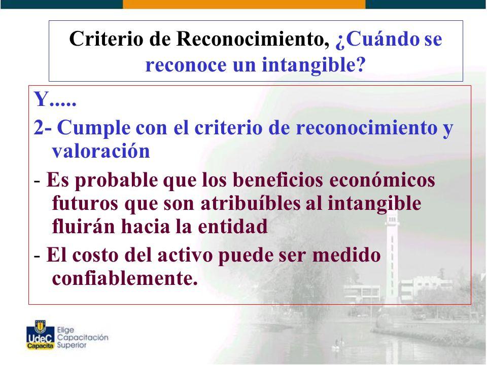 Criterio de Reconocimiento, ¿Cuándo se reconoce un intangible