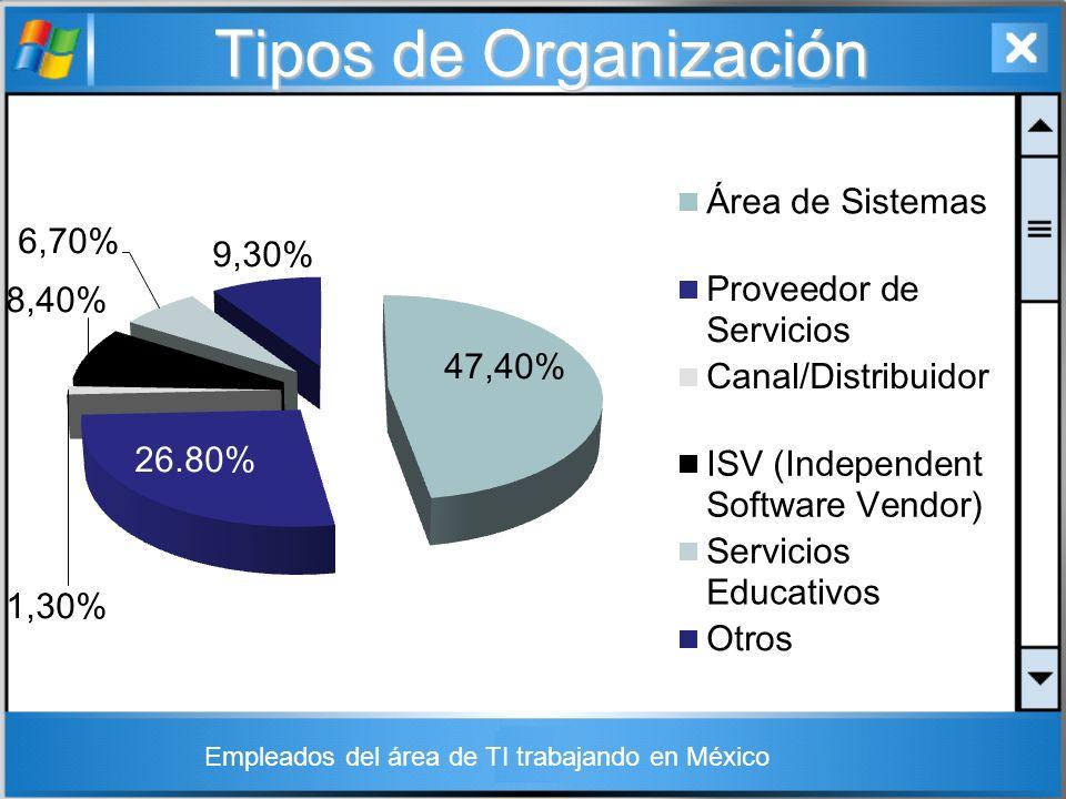 Empleados del área de TI trabajando en México