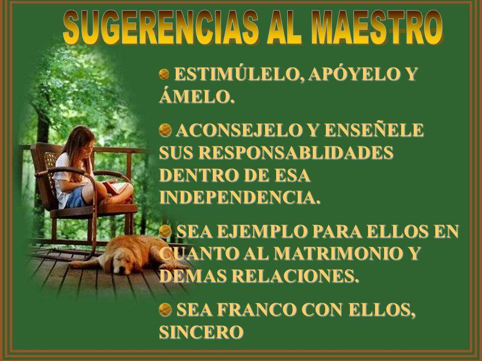 SUGERENCIAS AL MAESTRO