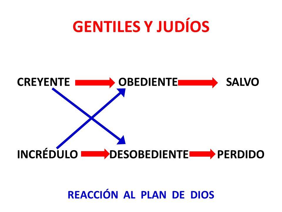 REACCIÓN AL PLAN DE DIOS