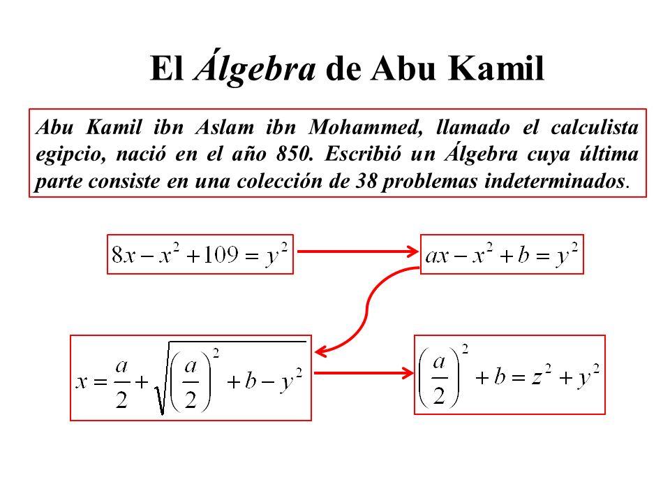 El Álgebra de Abu Kamil