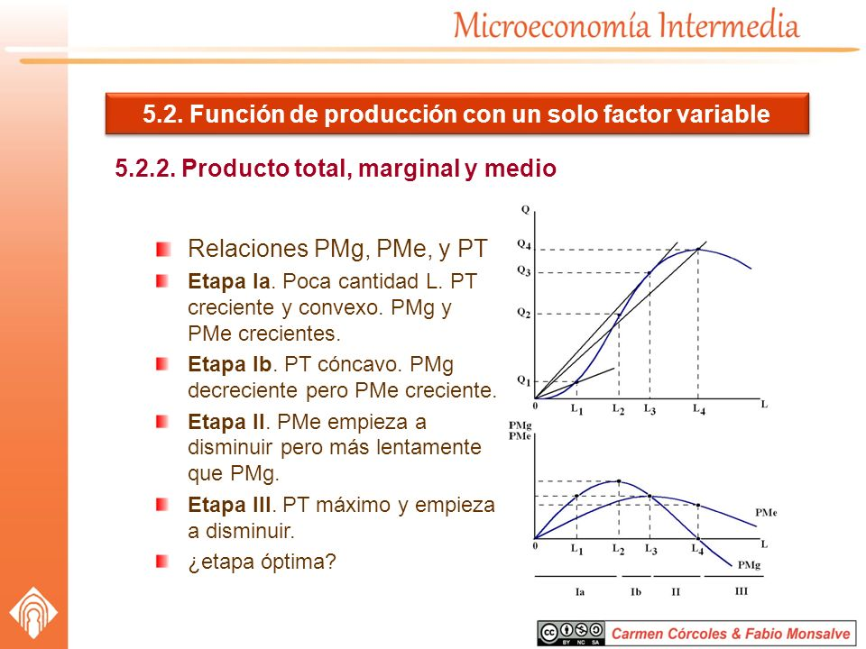 5.2. Función de producción con un solo factor variable
