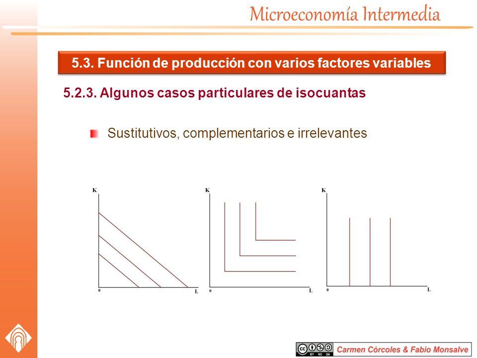 5.3. Función de producción con varios factores variables
