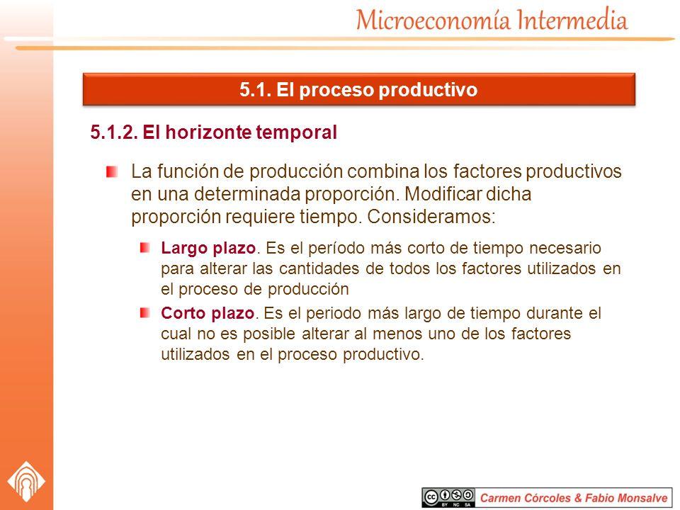 5.1. El proceso productivo 5.1.2. El horizonte temporal