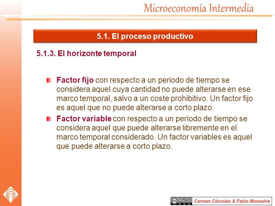5.1. El proceso productivo 5.1.3. El horizonte temporal.