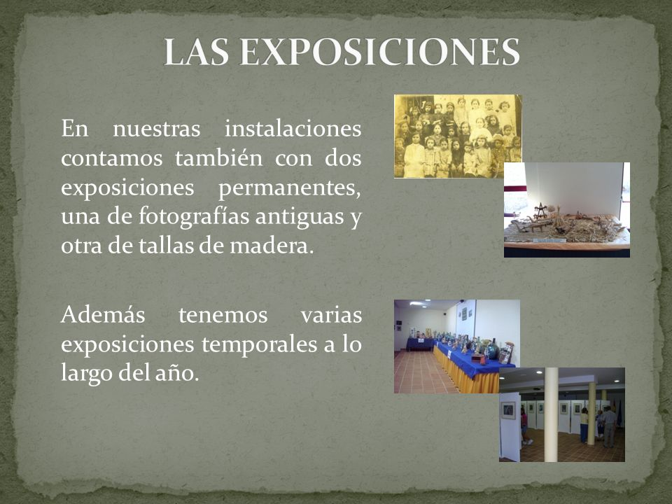 LAS EXPOSICIONES