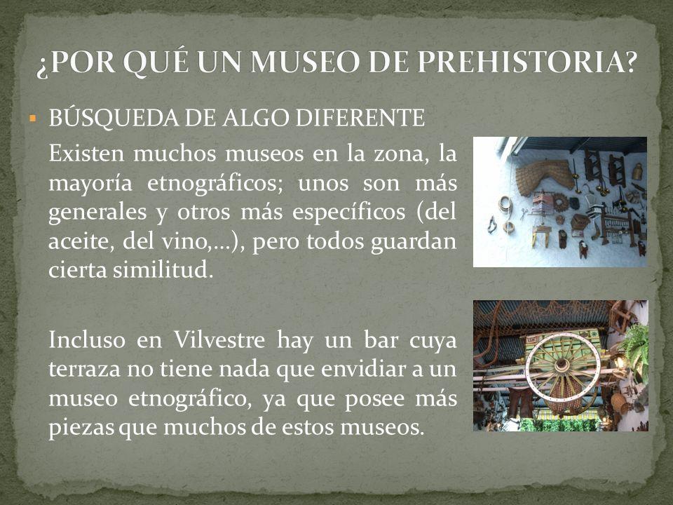 ¿POR QUÉ UN MUSEO DE PREHISTORIA