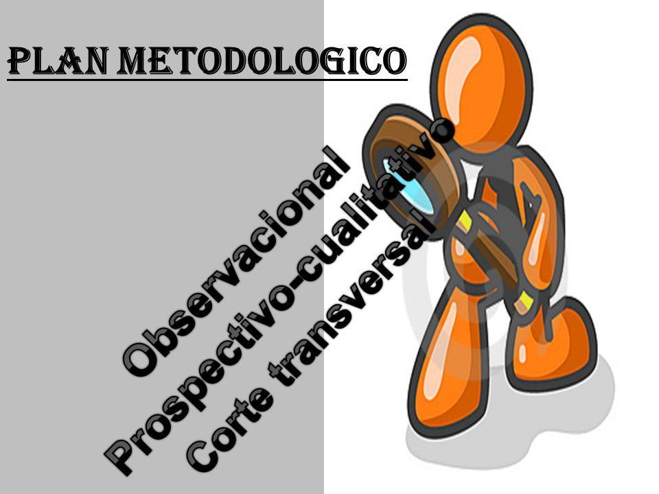 Prospectivo-cualitativo