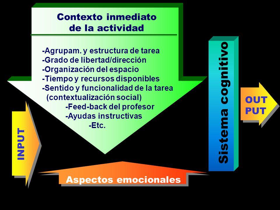 Sistema cognitivo Contexto inmediato de la actividad OUT PUT INPUT
