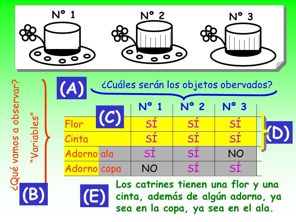 (A) (C) (D) (B) (E) Nº 1 Nº 2 Nº 3