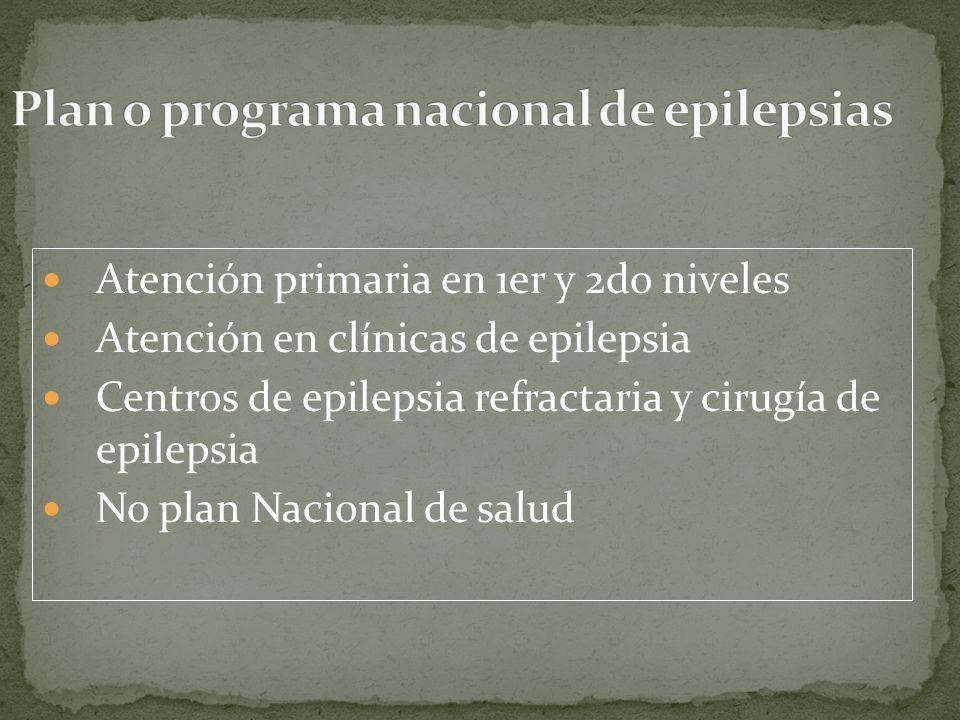 Plan o programa nacional de epilepsias