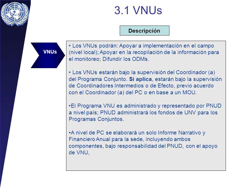 3.1 VNUs Descripción.