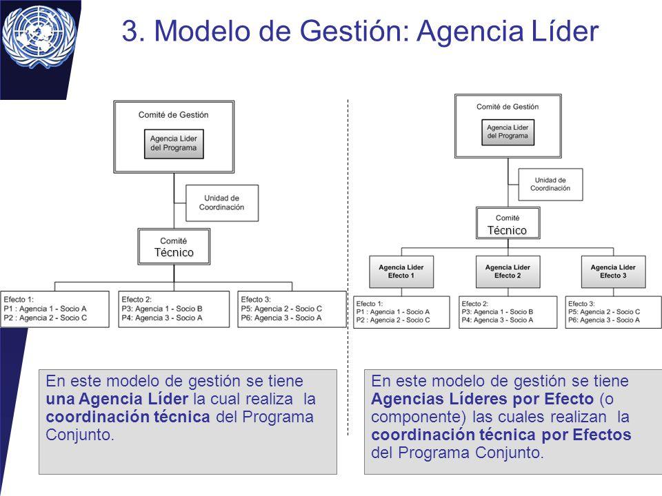 3. Modelo de Gestión: Agencia Líder