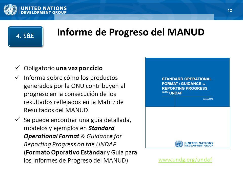 Informe de Progreso del MANUD