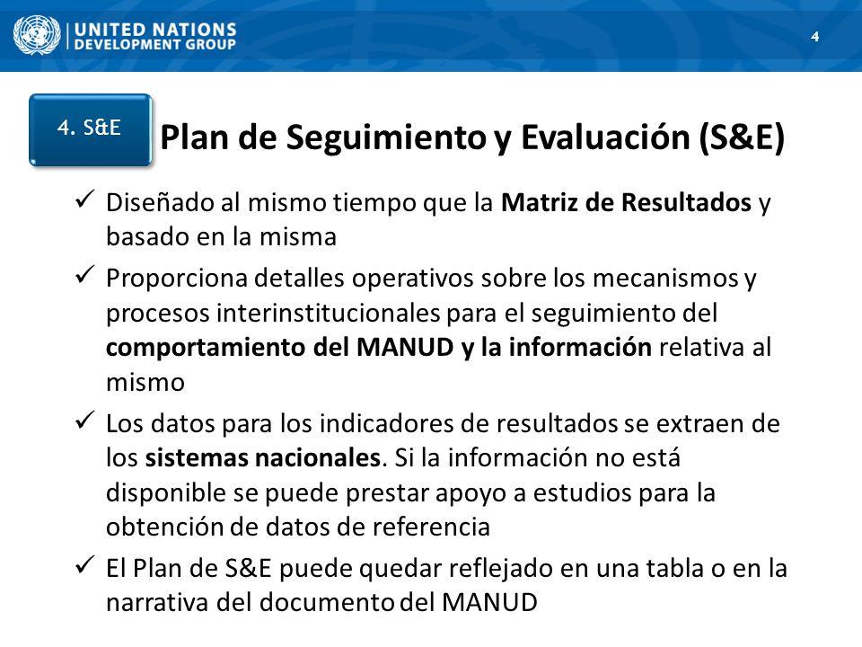 Plan de Seguimiento y Evaluación (S&E)