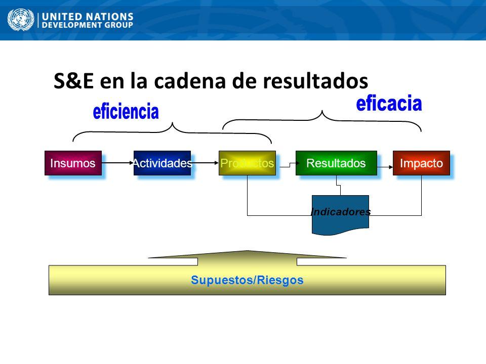 S&E en la cadena de resultados