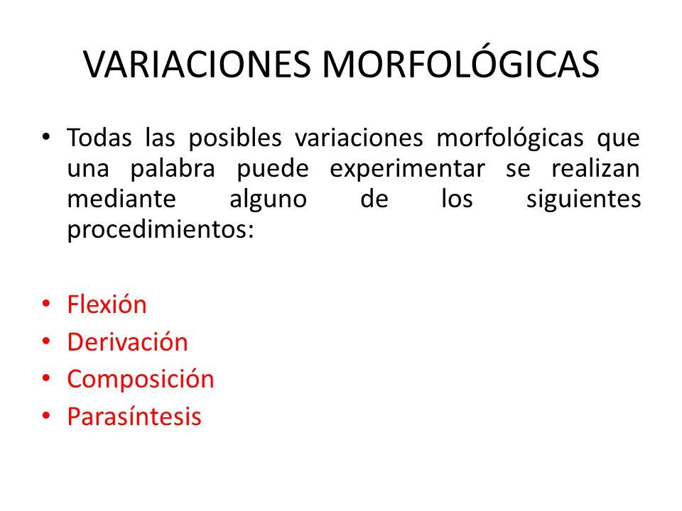 VARIACIONES MORFOLÓGICAS