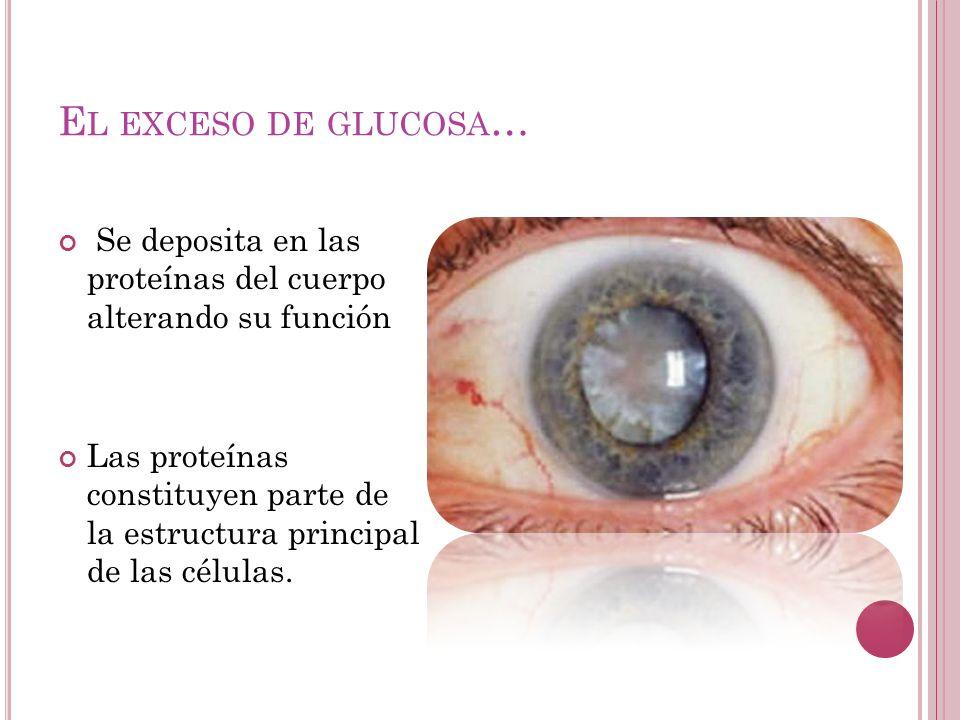 El exceso de glucosa… Se deposita en las proteínas del cuerpo alterando su función.