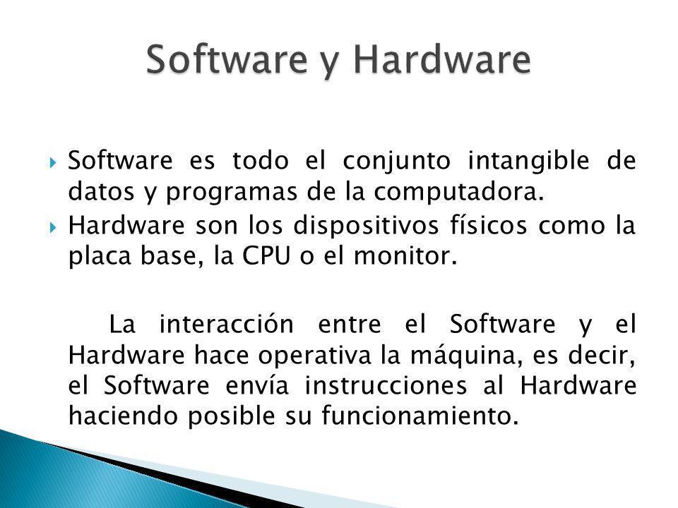 Software y Hardware Software es todo el conjunto intangible de datos y programas de la computadora.