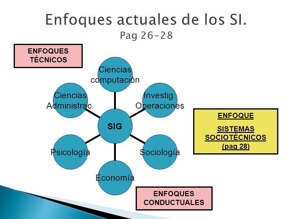 Enfoques actuales de los SI. Pag 26-28