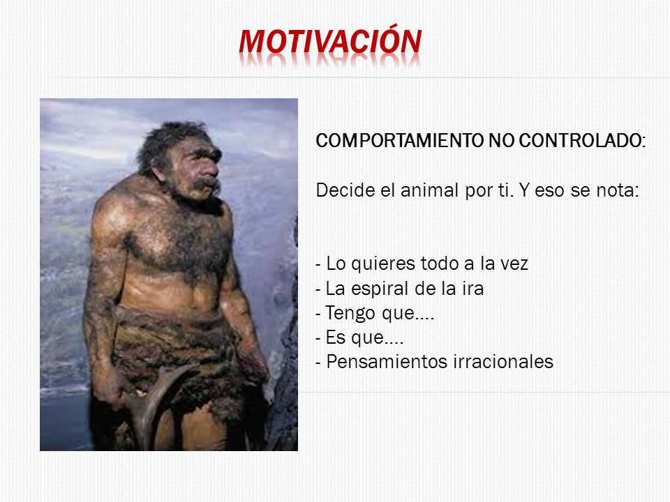 COMPORTAMIENTO NO CONTROLADO: Decide el animal por ti. Y eso se nota: