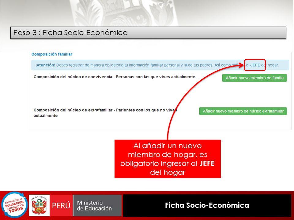Ficha Socio-Económica