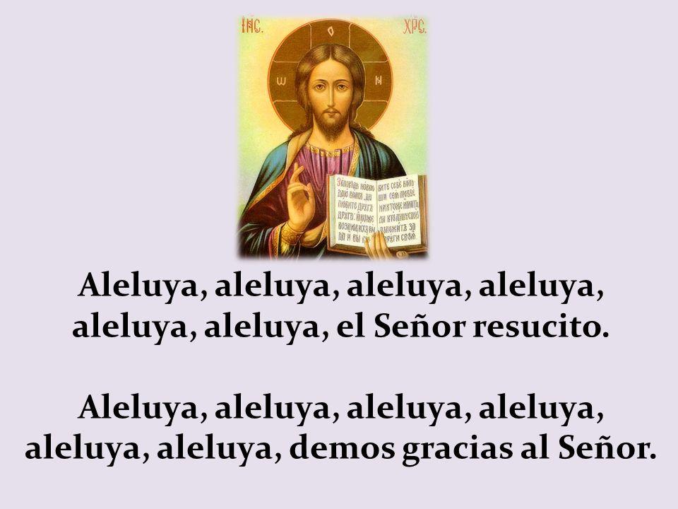 Aleluya, aleluya, aleluya, aleluya, aleluya, aleluya, el Señor resucito.