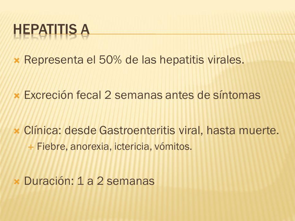 Hepatitis A Representa el 50% de las hepatitis virales.