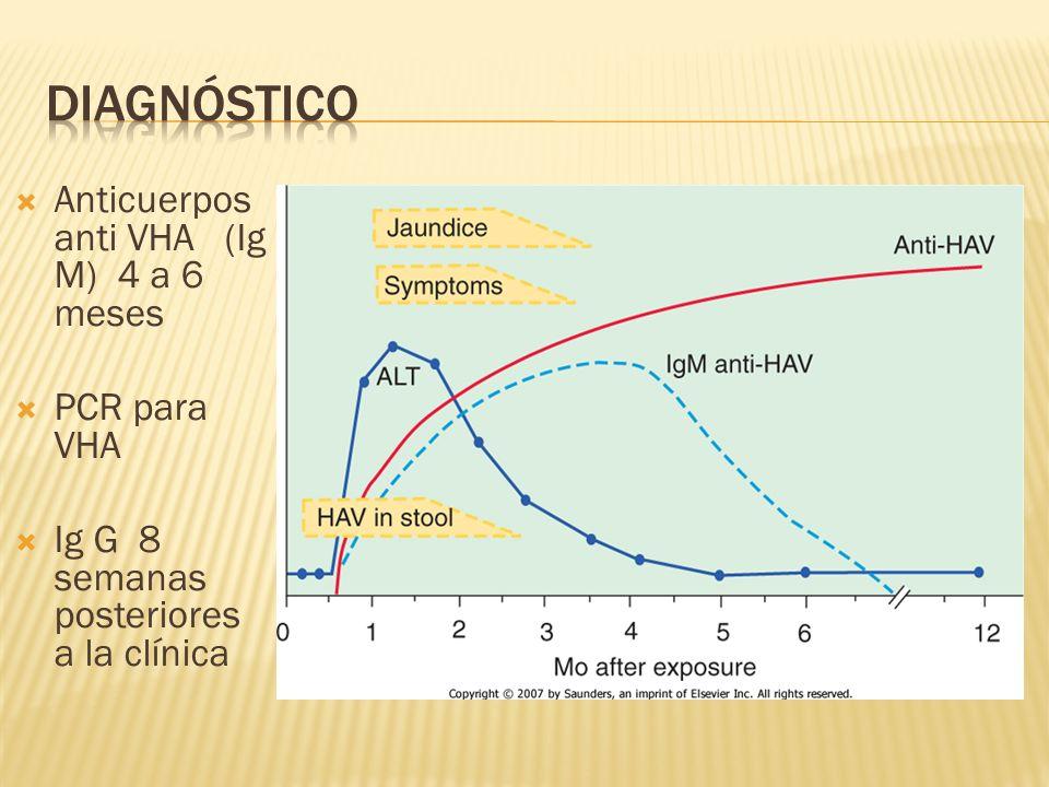 diagnóstico Anticuerpos anti VHA (Ig M) 4 a 6 meses PCR para VHA