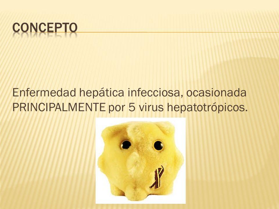 concepto Enfermedad hepática infecciosa, ocasionada PRINCIPALMENTE por 5 virus hepatotrópicos.