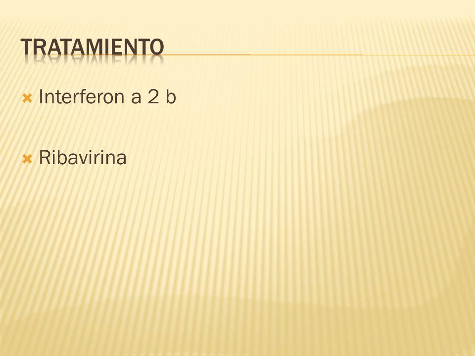 tratamiento Interferon a 2 b Ribavirina