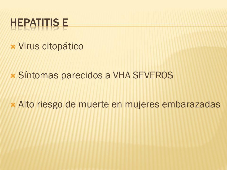 Hepatitis e Virus citopático Síntomas parecidos a VHA SEVEROS