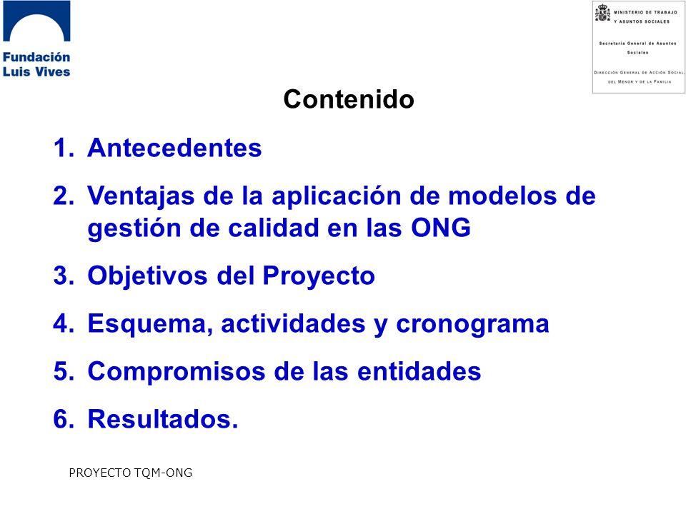 Ventajas de la aplicación de modelos de gestión de calidad en las ONG