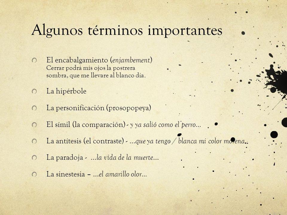 Algunos términos importantes