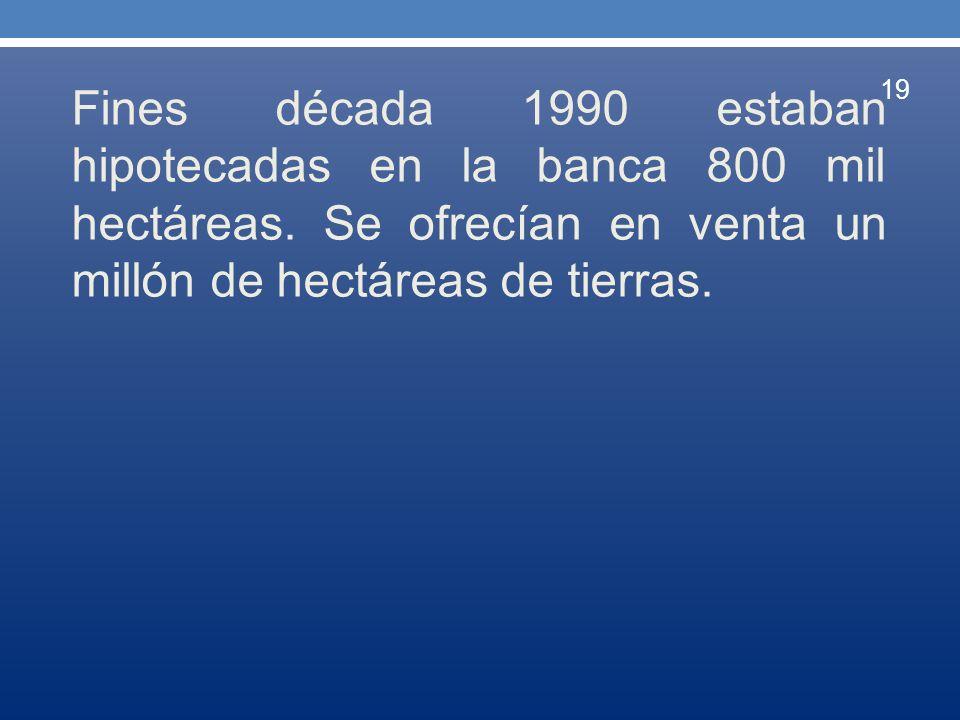 Fines década 1990 estaban hipotecadas en la banca 800 mil hectáreas