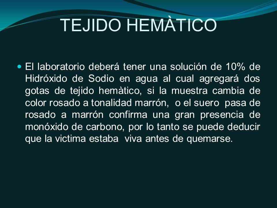TEJIDO HEMÀTICO