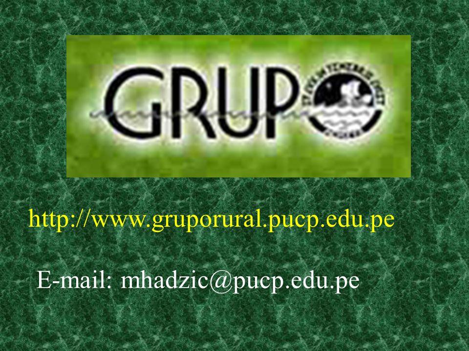 http://www.gruporural.pucp.edu.pe E-mail: mhadzic@pucp.edu.pe