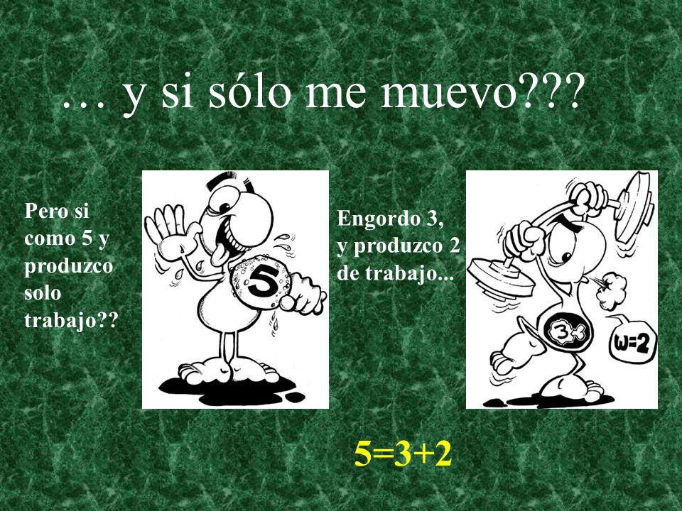 … y si sólo me muevo 5=3+2 Engordo 3, y produzco 2 de trabajo...
