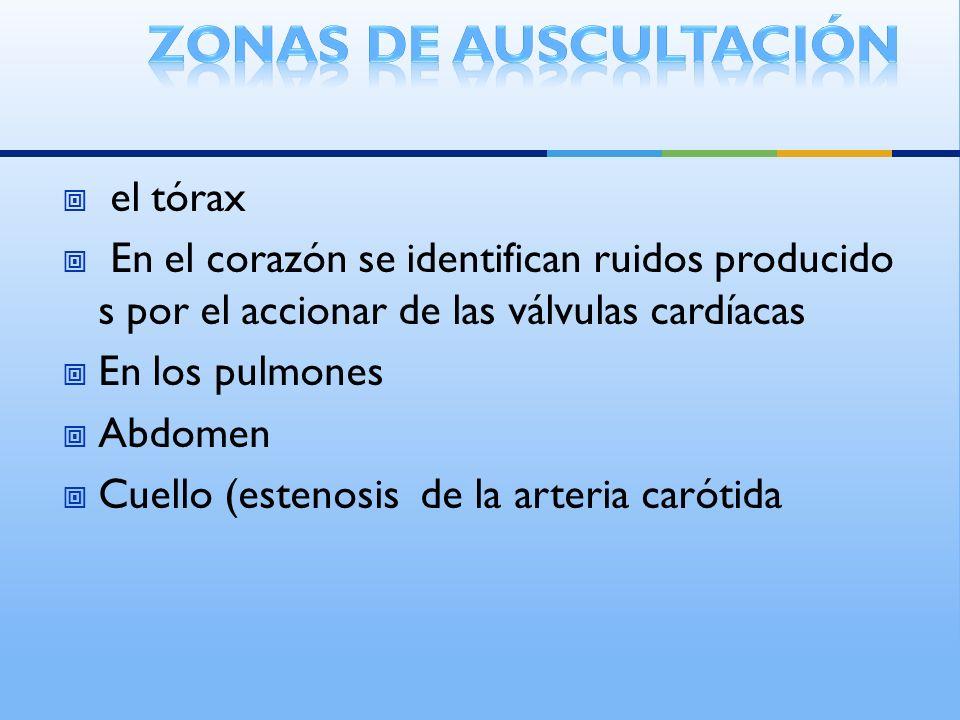 Zonas de auscultación el tórax