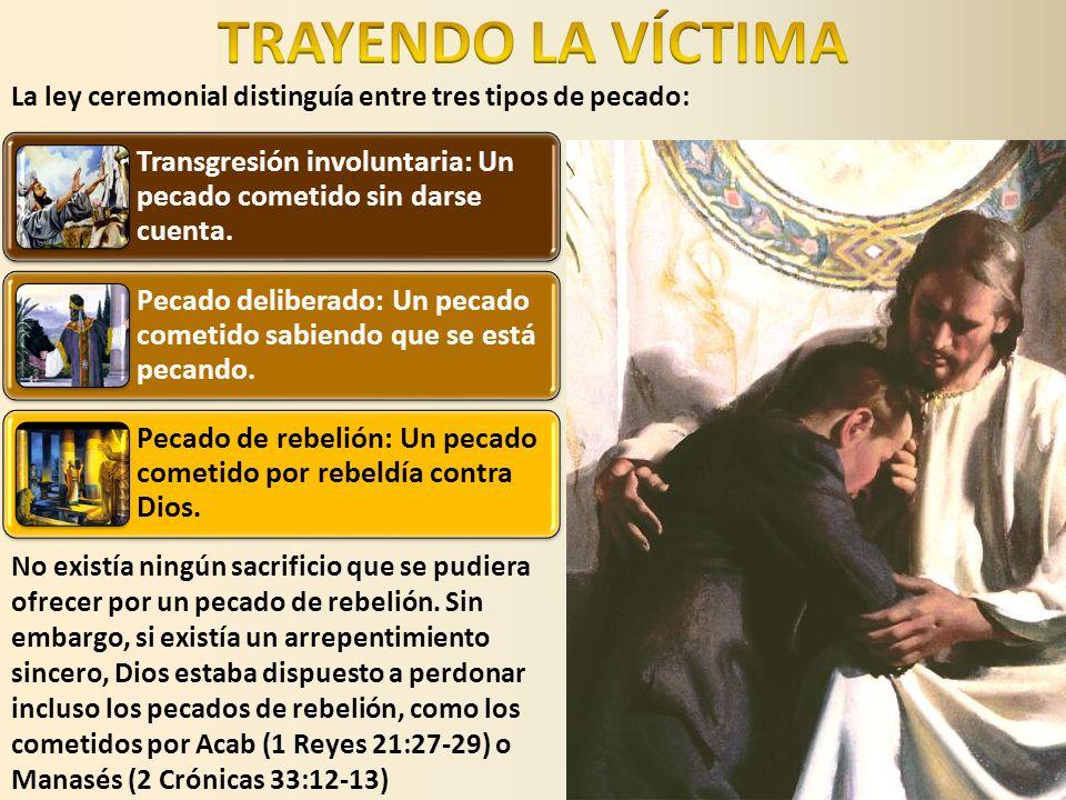 TRAYENDO LA VÍCTIMA La ley ceremonial distinguía entre tres tipos de pecado: Transgresión involuntaria: Un pecado cometido sin darse cuenta.