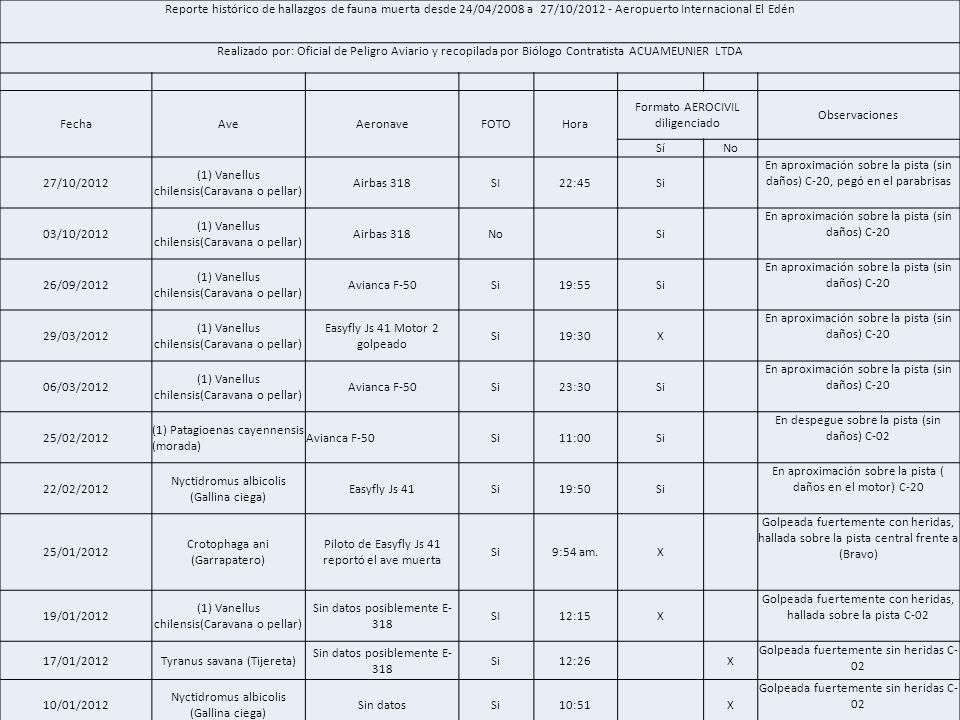 Formato AEROCIVIL diligenciado Observaciones