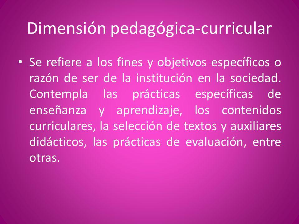 Dimensión pedagógica-curricular