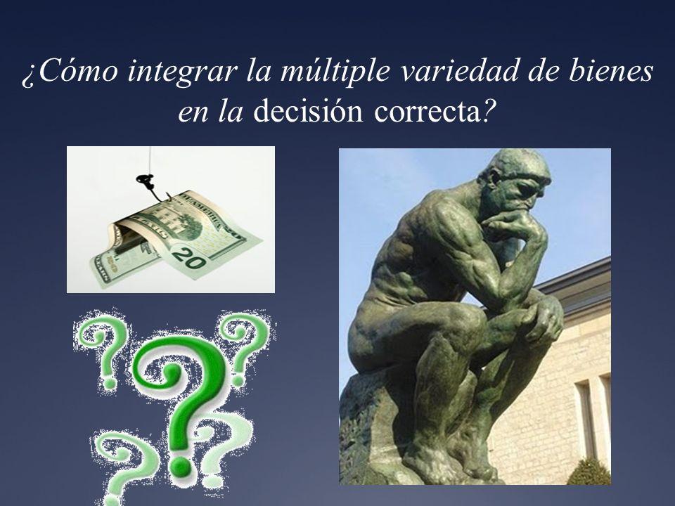 ¿Cómo integrar la múltiple variedad de bienes en la decisión correcta