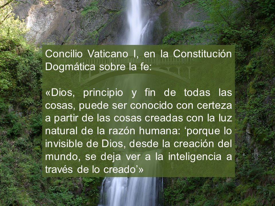 Concilio Vaticano I, en la Constitución Dogmática sobre la fe: