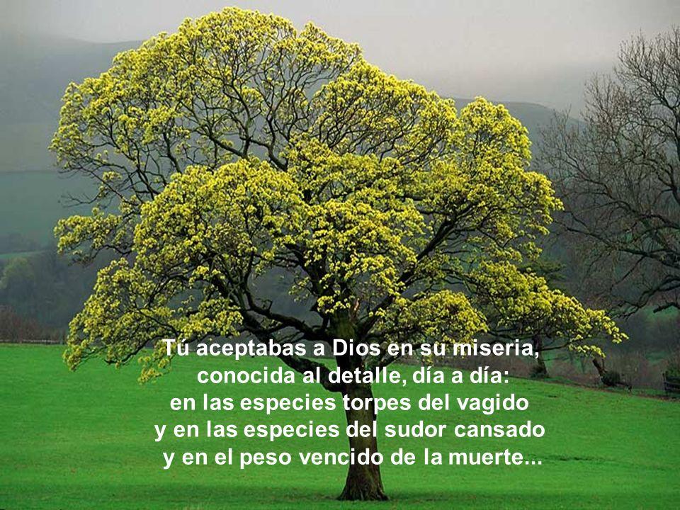 Tú aceptabas a Dios en su miseria, conocida al detalle, día a día: