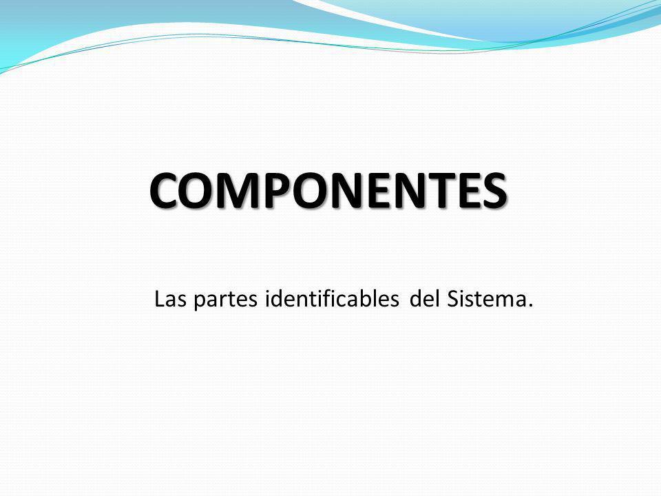 Las partes identificables del Sistema.