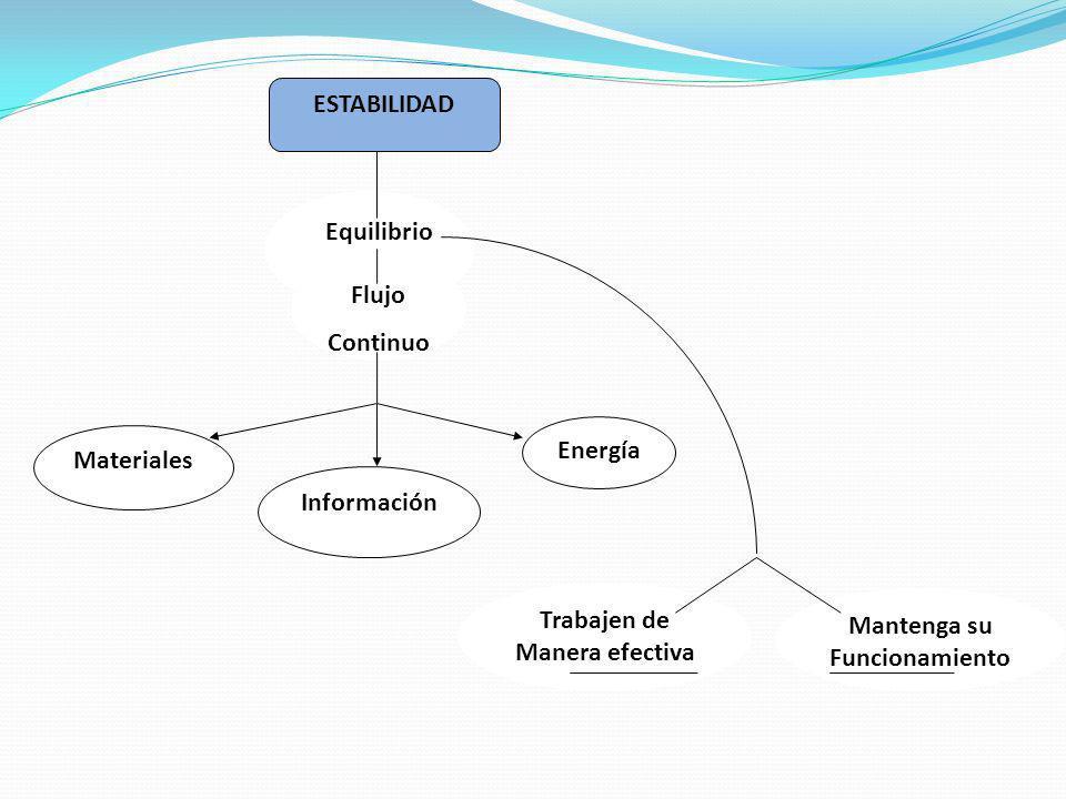 ESTABILIDAD Equilibrio. Flujo. Continuo. Información. Energía. Materiales. Mantenga su. Funcionamiento.
