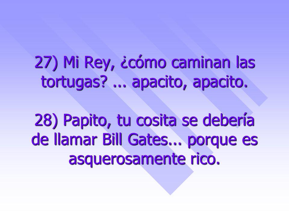 27) Mi Rey, ¿cómo caminan las tortugas. apacito, apacito